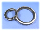 B1 type shaft seal (open metal case)
